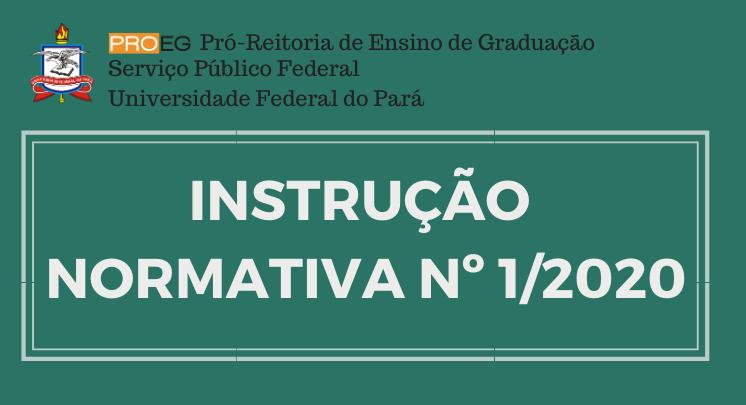 Instrução Normativa Nº 1/2020