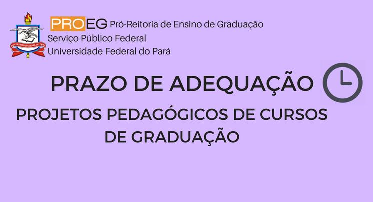 PRAZO DE ADEQUAÇÃO AOS PROJETOS PEDAGÓGICOS DE CURSOS DE GRADUAÇÃO